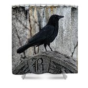 R Is For Raven Shower Curtain