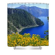 D2m5622-rabbit Brush At Crater Lake Shower Curtain
