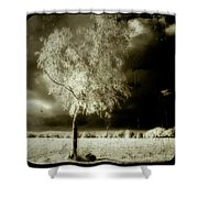 Rabbit In The Distant Shadows Shower Curtain