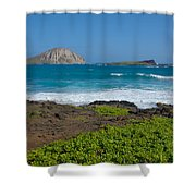 Rabbit Island Shower Curtain