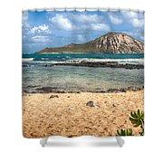 Rabbit Island Shower Curtain