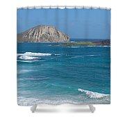 Rabbit Island Panorama Shower Curtain