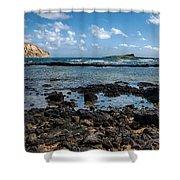Rabbit Island Tide Pools Shower Curtain