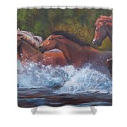 Race For Freedom Shower Curtain