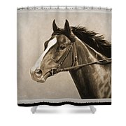 Race Horse Old Photo Fx Shower Curtain by Crista Forest