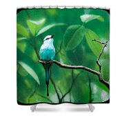 Racquet Tailed Roller Shower Curtain