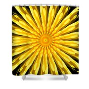 Radial Love Shower Curtain