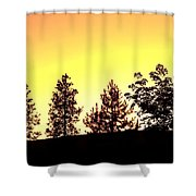 Radiance Of Nature Shower Curtain