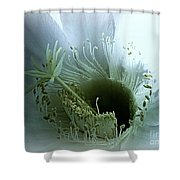 Radiant Being Shower Curtain