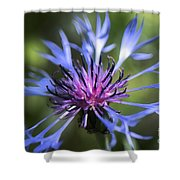 Radiant Flower Shower Curtain