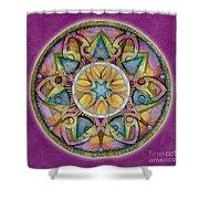 Radiant Health Mandala Shower Curtain