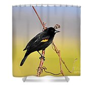 Radiant Red-winged Shower Curtain