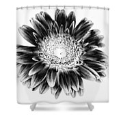 Radiant Solarized Shower Curtain