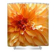 Radiating Orange Dahlia Shower Curtain