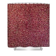 Radiation With Brown Magenta And Violet  Shower Curtain
