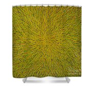 Radiation With Yellow Green And Red Shower Curtain