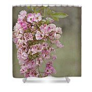 Raelene Shower Curtain