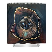 Cat Painting. Ragdoll Cat The Cat's In The Bag Shower Curtain