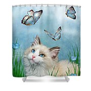 Ragdoll Kitty And Butterflies Shower Curtain