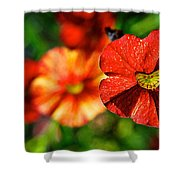 Raggedy Anne Shower Curtain