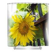 Railed Sunflower Shower Curtain