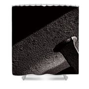 Railroad Spike And Rail Shower Curtain