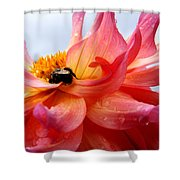 Rain Dancer Shower Curtain