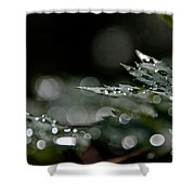 Rain Drop Bokeh Shower Curtain