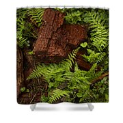Rain Forest Abstract Shower Curtain