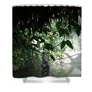 Rain Forest Overhang Shower Curtain