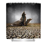 Rain Relief Shower Curtain
