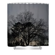 Rain Storm Clouds And Trees Shower Curtain