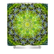 Lluvia Mandala Shower Curtain