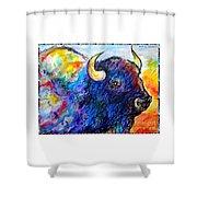 Rainbow Buffalo Shower Curtain