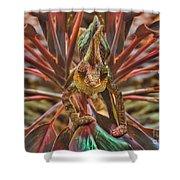 Rainbow Chameleon Shower Curtain