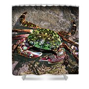 Rainbow Crab Shower Curtain
