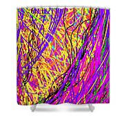 Rainbow Divine Fire Light Shower Curtain