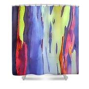 Rainbow Eucalyptus 2 Shower Curtain