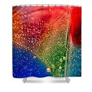 Rainbow Fishtail Shower Curtain