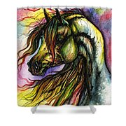Rainbow Horse 2 Shower Curtain