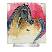 Rainbow Horse 2013 11 17 Shower Curtain