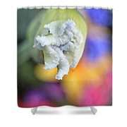 Rainbow Iris Shower Curtain