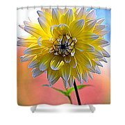Colors Of The Rainbow Shower Curtain