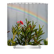 Rainbow Over Flower Shower Curtain