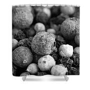 Rainbow Peppercorn Macro Black And White Shower Curtain