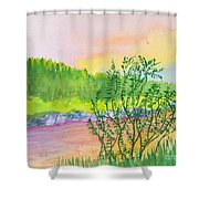 Rainbow River Shower Curtain