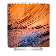 Rainbow Rocks Dead Bush #1 Shower Curtain