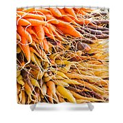 Rainbow Roots Shower Curtain