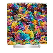 Rainbow Roses Shower Curtain