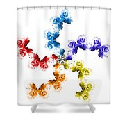 Rainbow Roses In White Shower Curtain